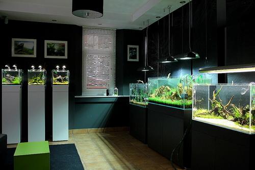 Elkészült a Green Aqua bemutatóterem