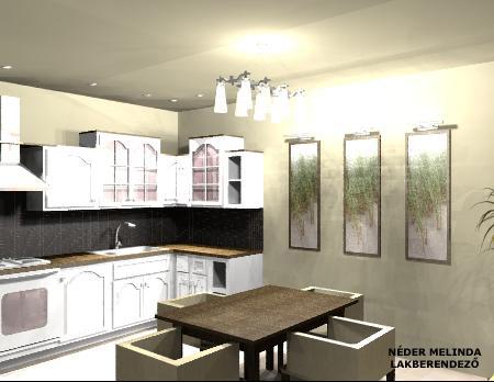50 nm-es ház, konyha (látvány tervek)