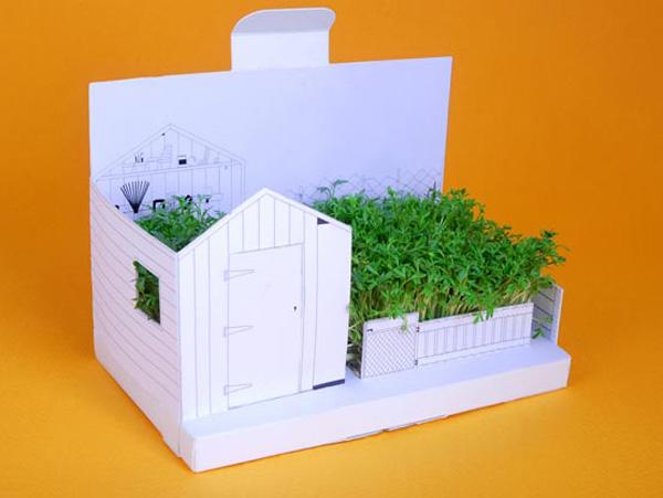 Küldj kertet képeslapban