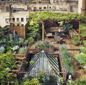 Titkos kert a háztetőn